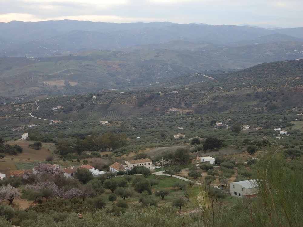 And looking down toEl Toril and Casa Rosina.