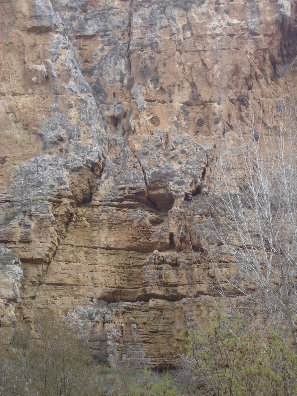 The side of the gorge