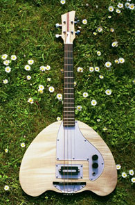 Electric Tenor Banjo