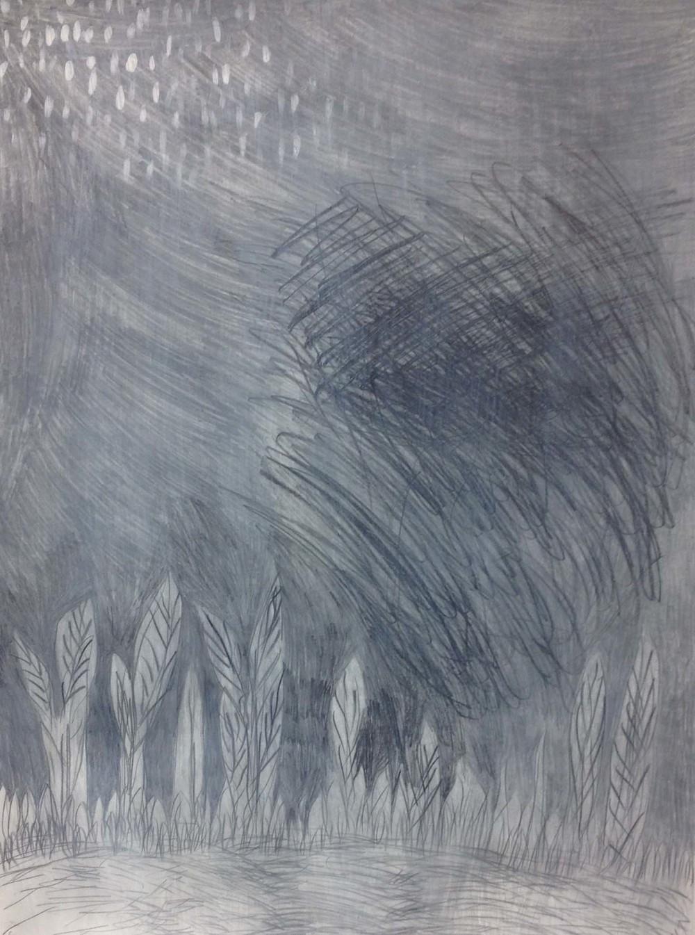 grey grass.jpg