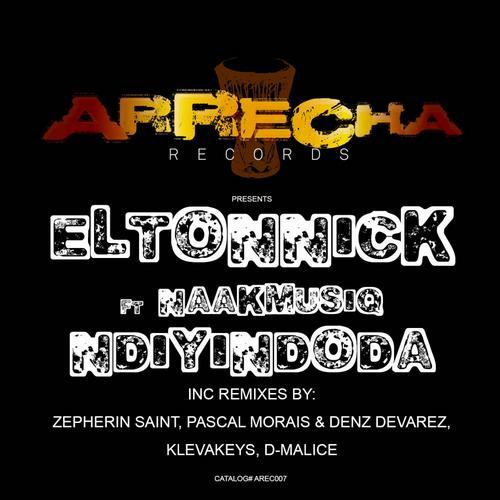 Eltonnick ft. NaakMusiQ - Ndiyindoda (Original Mix)