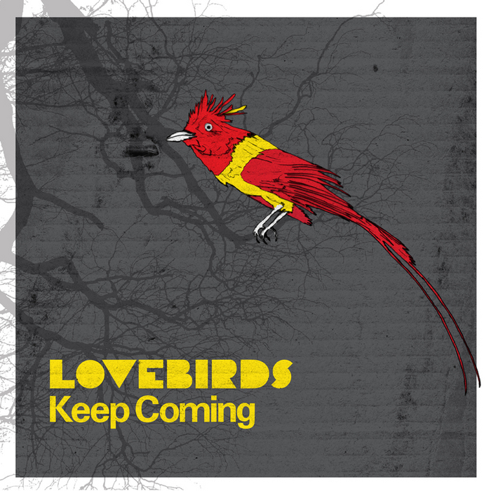 Lovebirds - Brotha (Raw Mix)
