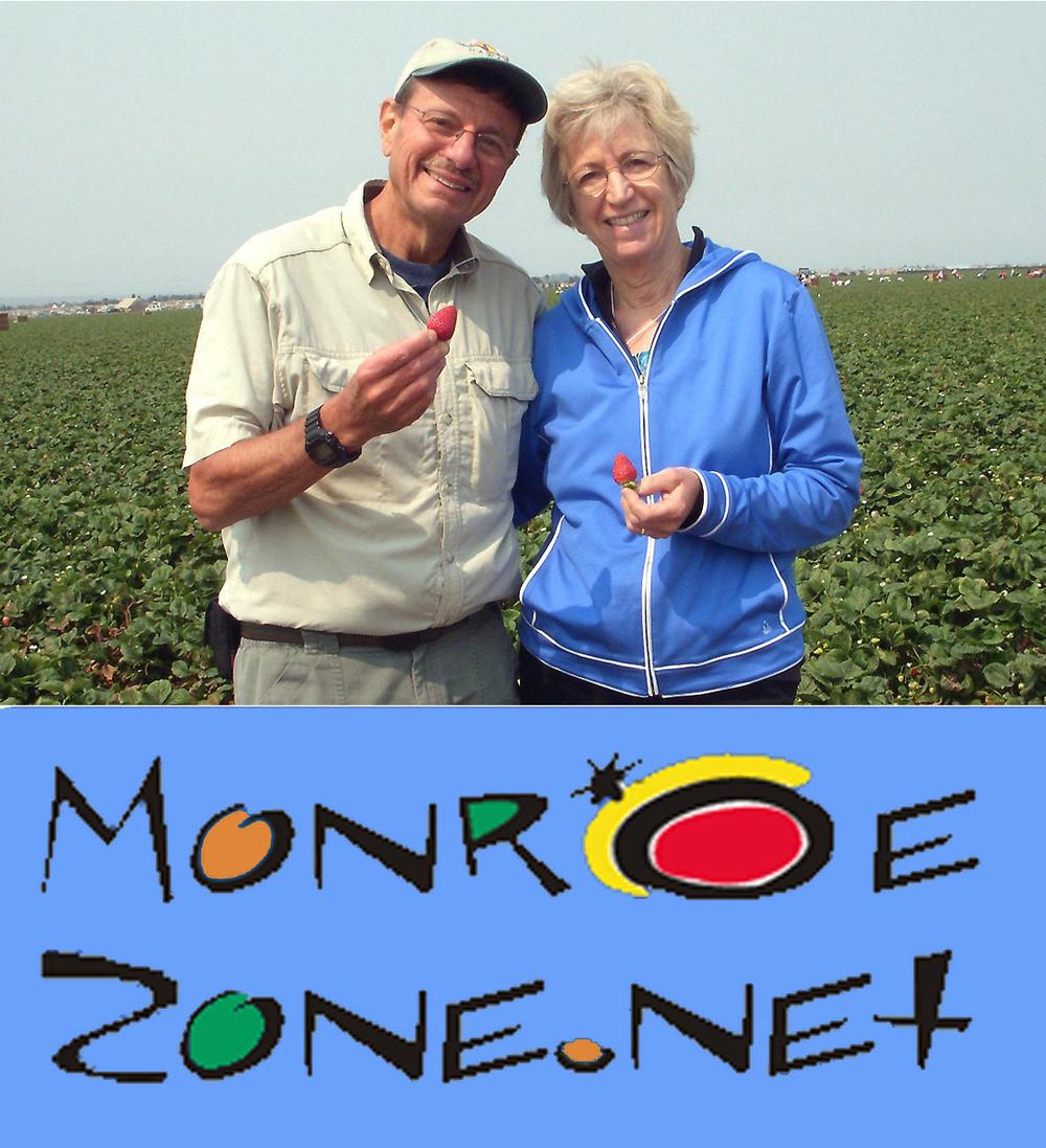MonroeZone_Logo.jpg