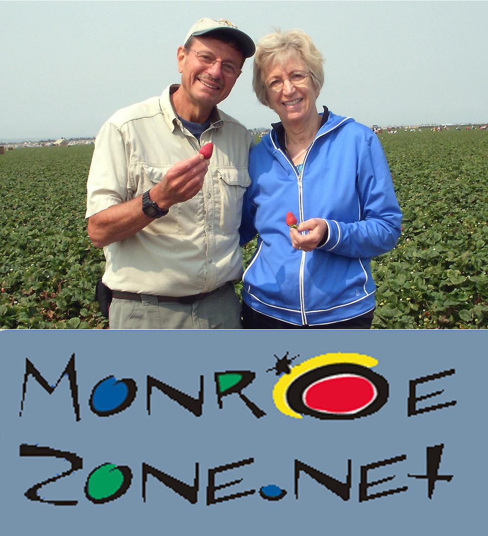 MonroeZoneLogo1.jpg