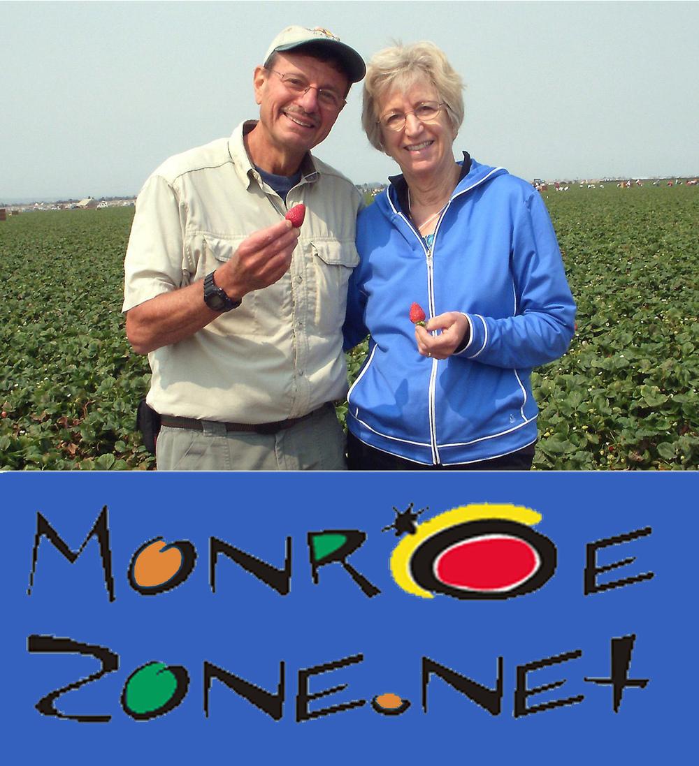 MonroeZoneLogo3.jpg