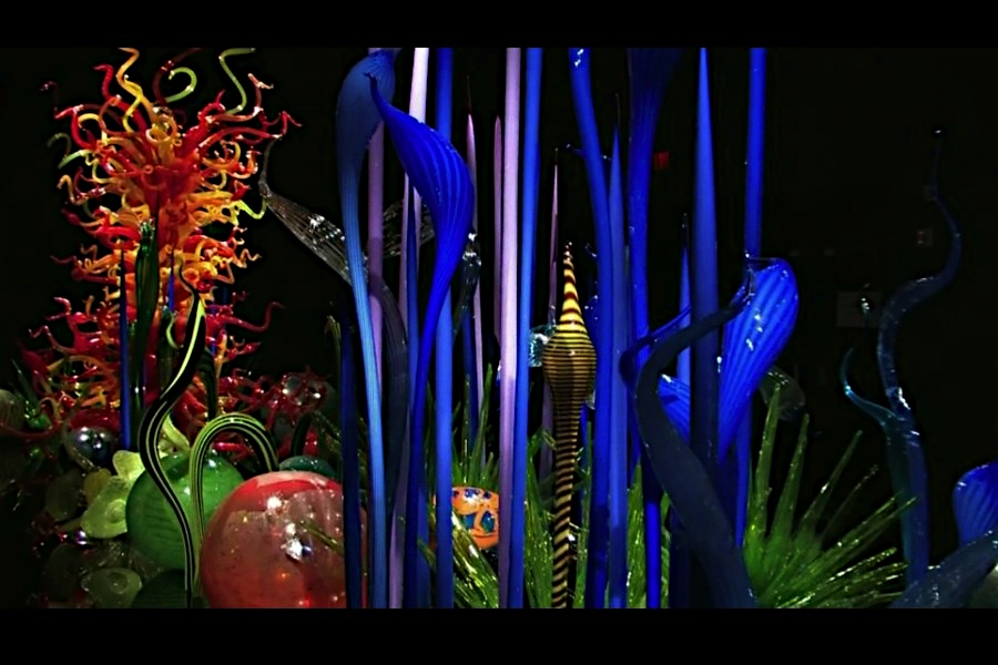 Chihuly_008-filtered-3.jpeg