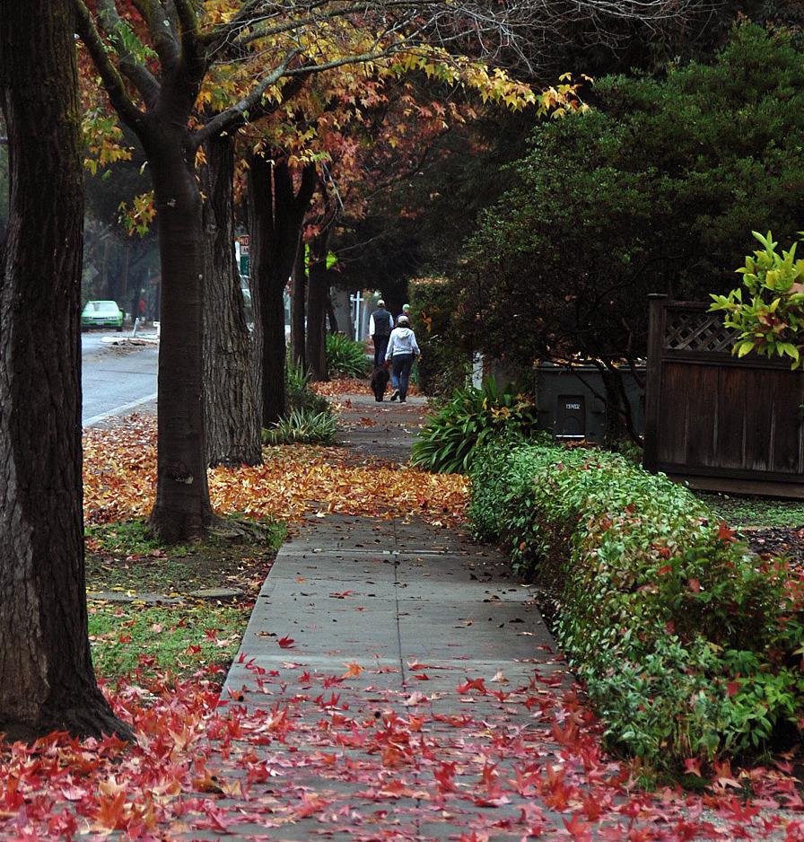 Sidewalk-ers