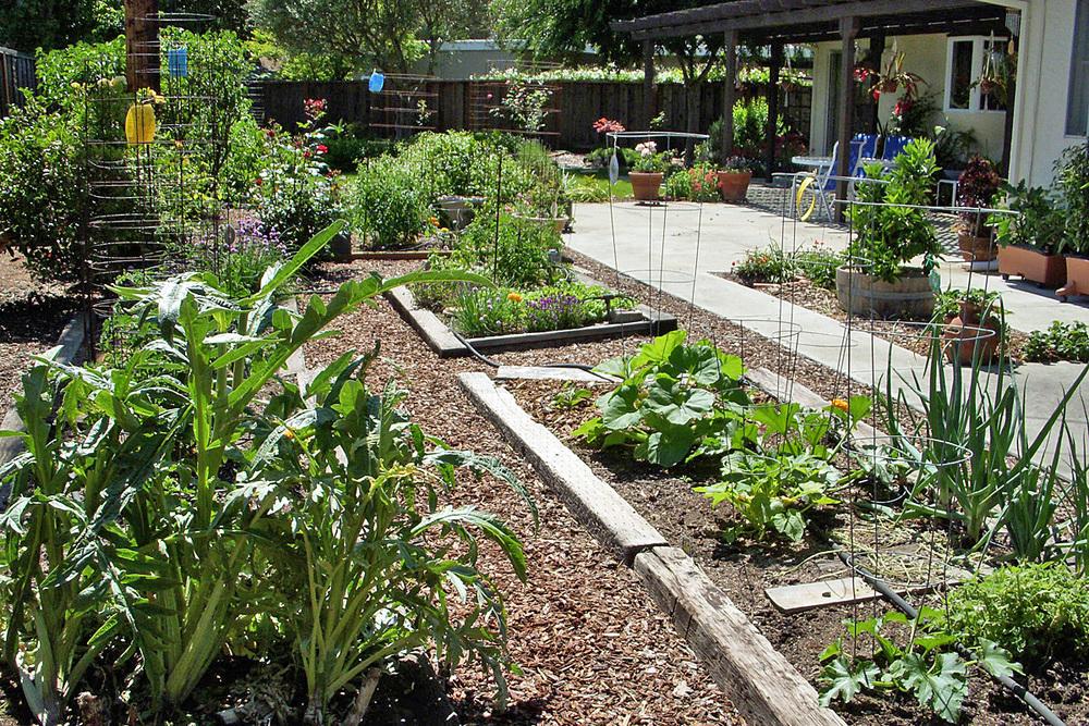 Spring garden plantings