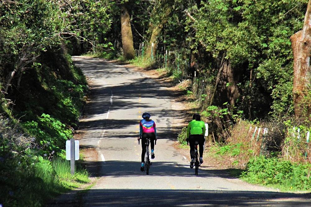 Trail bikes