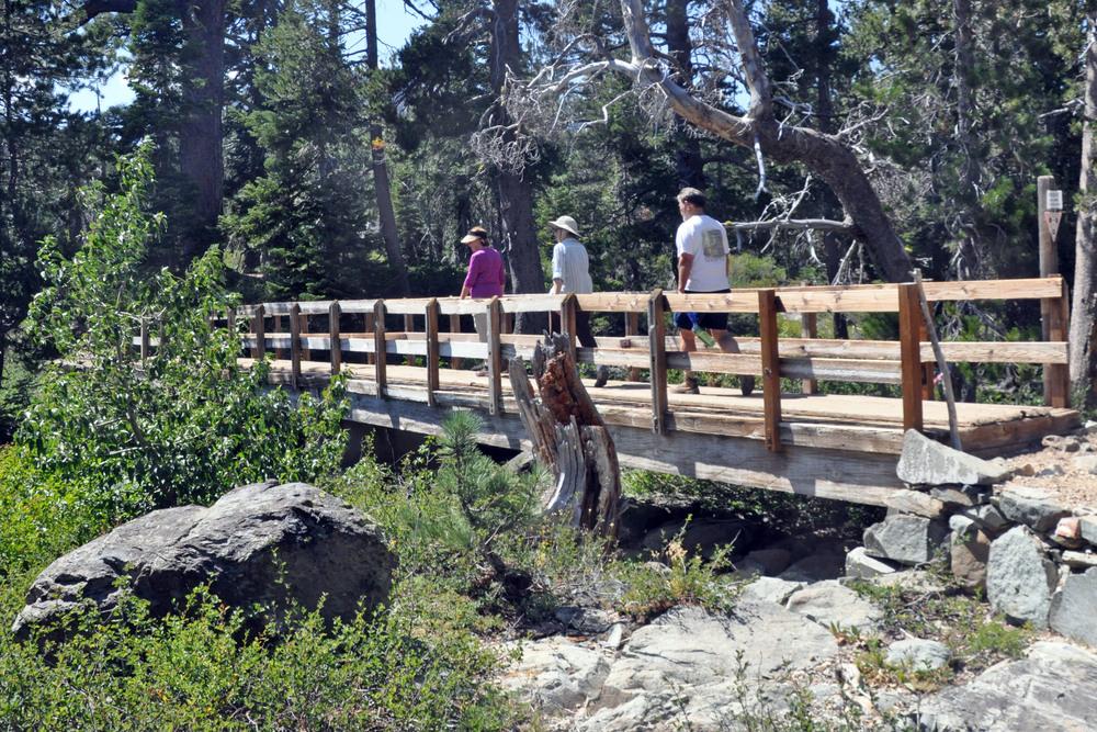 Forest Service Bridge