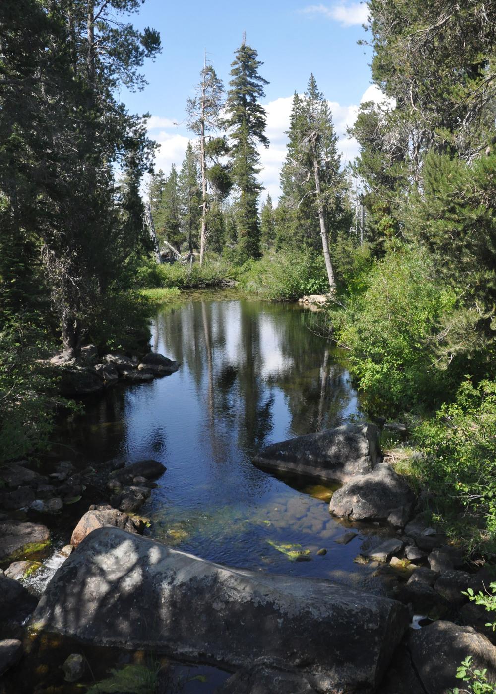 Gray Eagle Creek