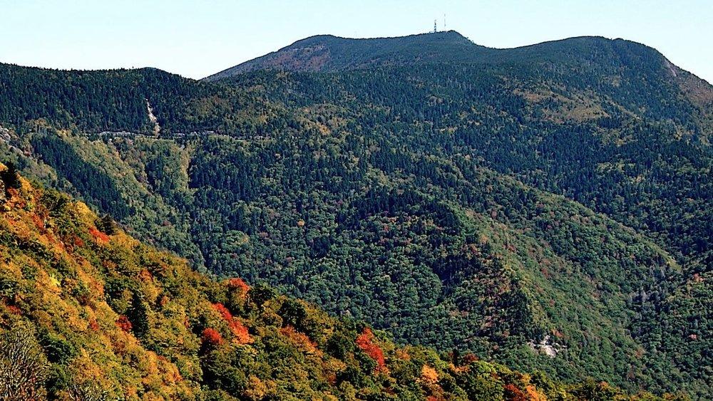 Approaching Mt. Mitchell Summit