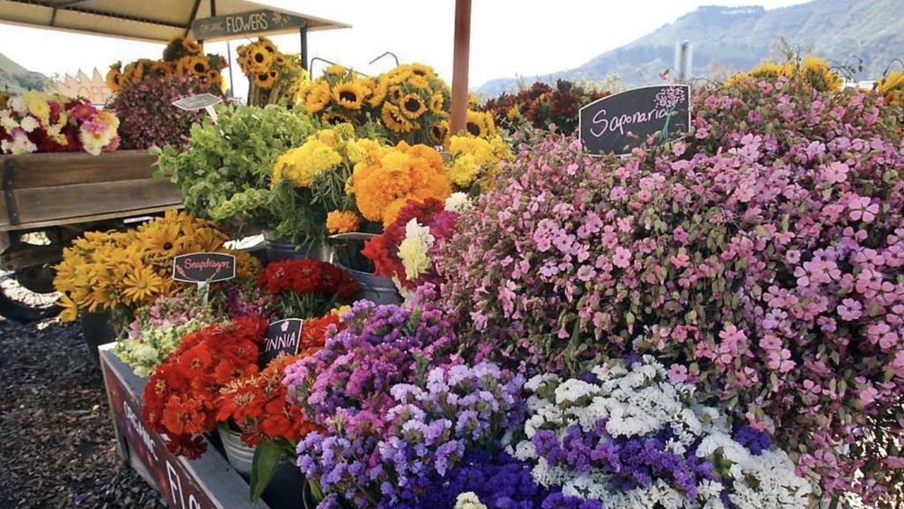 Monterey flower stand