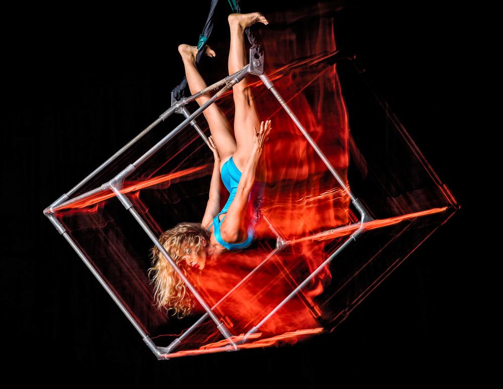 Simian-acrobats_0006.jpg