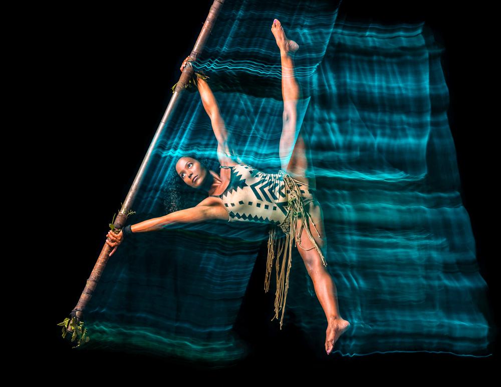 Simian-acrobats-1.jpg