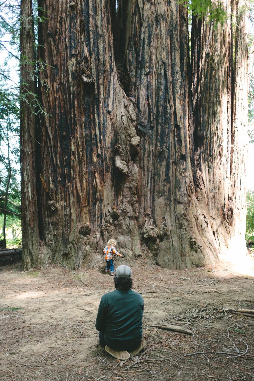 Hendy Woods Scout Folks Web-39.jpg