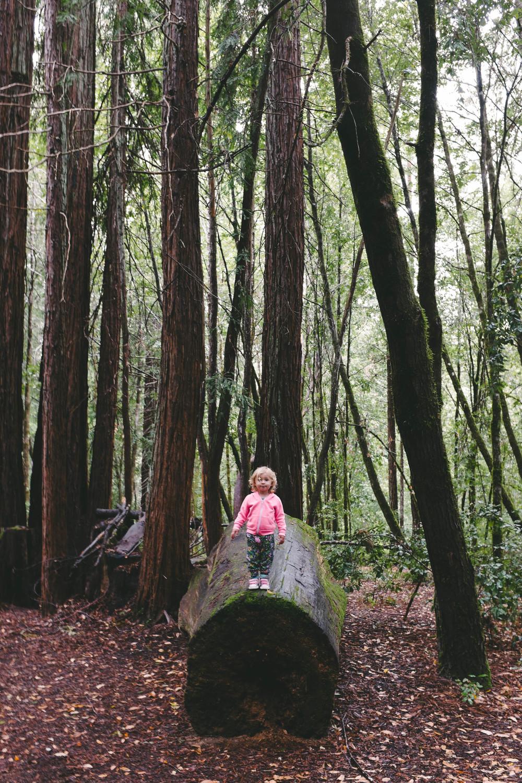 Hendy Woods Scout Folks Web-3.jpg
