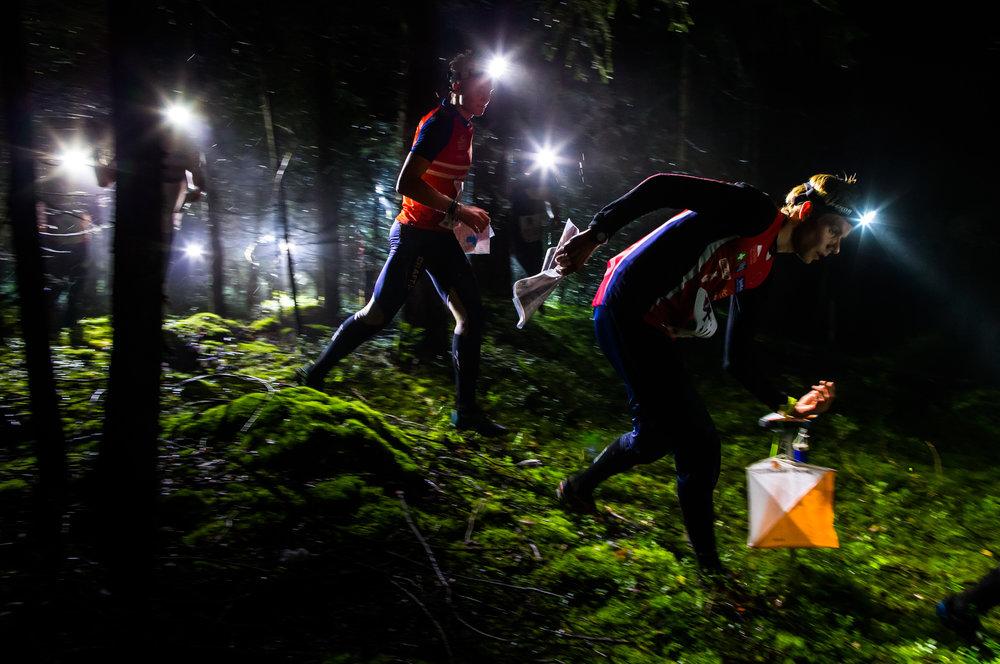 night hawk orienteering nattorientering.JPG