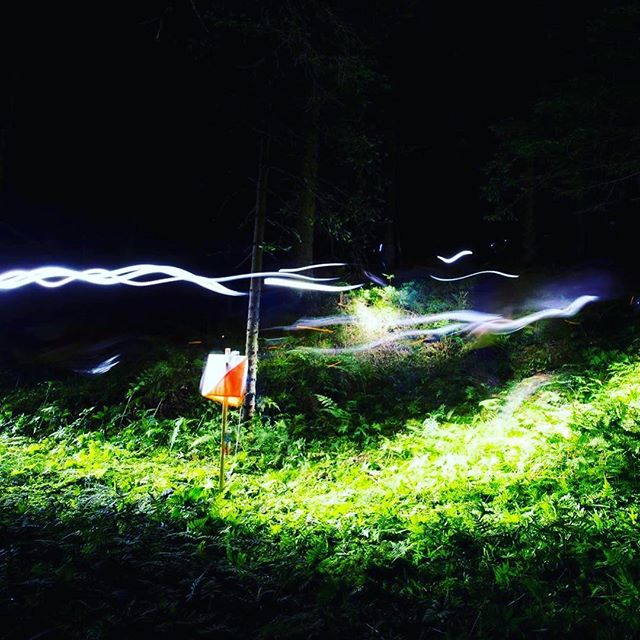 #throwbackthursday #tiomila #jukola #orientering #orienteering #orienteringsløb #suunistus #nighthawkrelay Welcome to @nighthawkrelay 11-12th of August