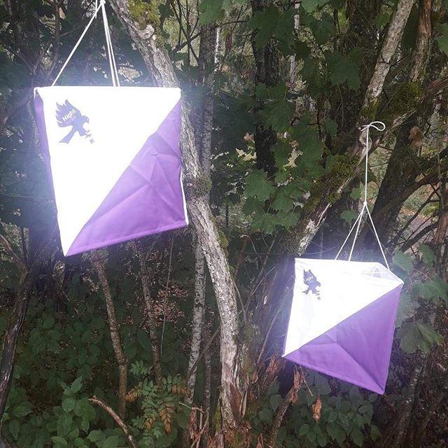 Get your own NightHawk control flag 99kr. Kjøp din egen NightHawk o-post til 99kr. #10mila #jukola #oringen2018 #oringen #orientering #orienteering #orienteringsløb #nighthawkrelay