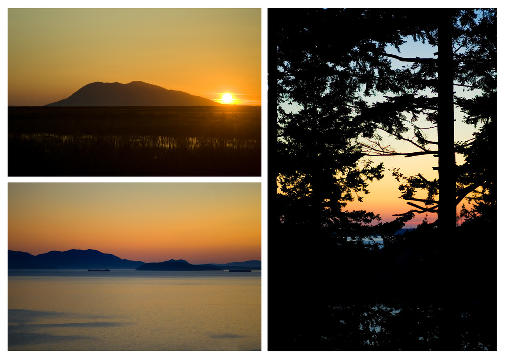 12 Sunsets.jpg