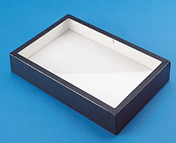 A nice insect display box can be used as a Tintype Presentation Case.
