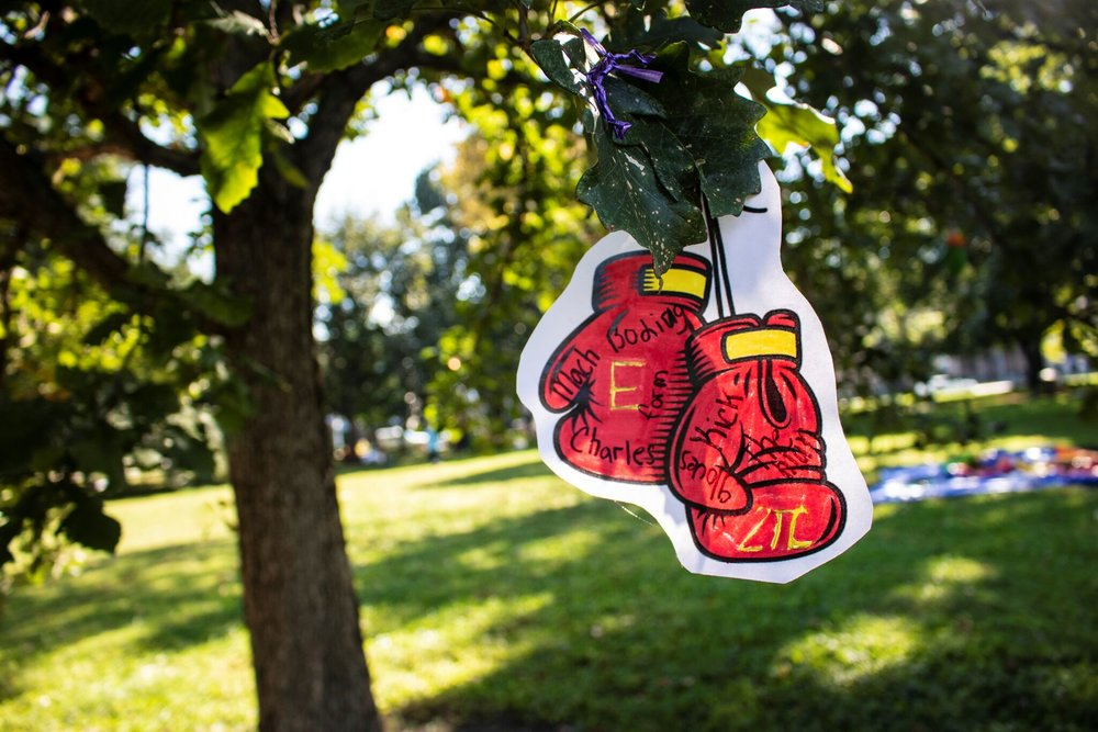 Local kids illustrated a bunch of gloves for the park
