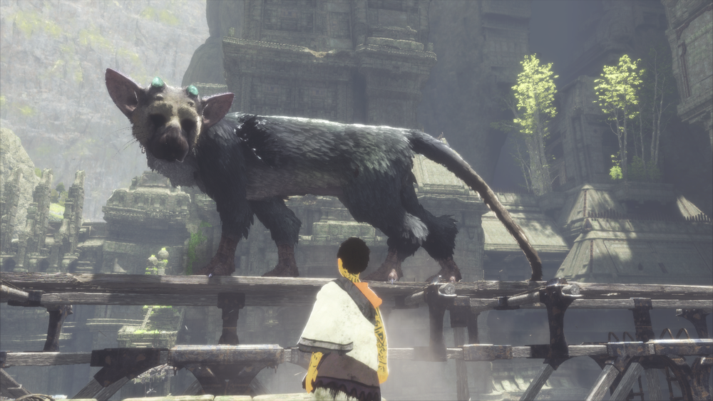 Find someone who cares about you as much as Trico cares about the boy.
