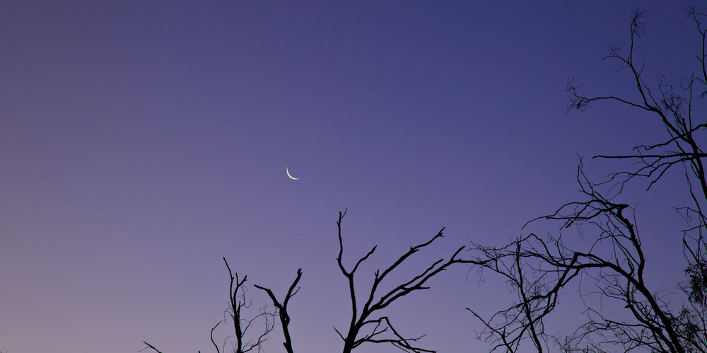 Setting Crescent Moon, Murray River.jpg