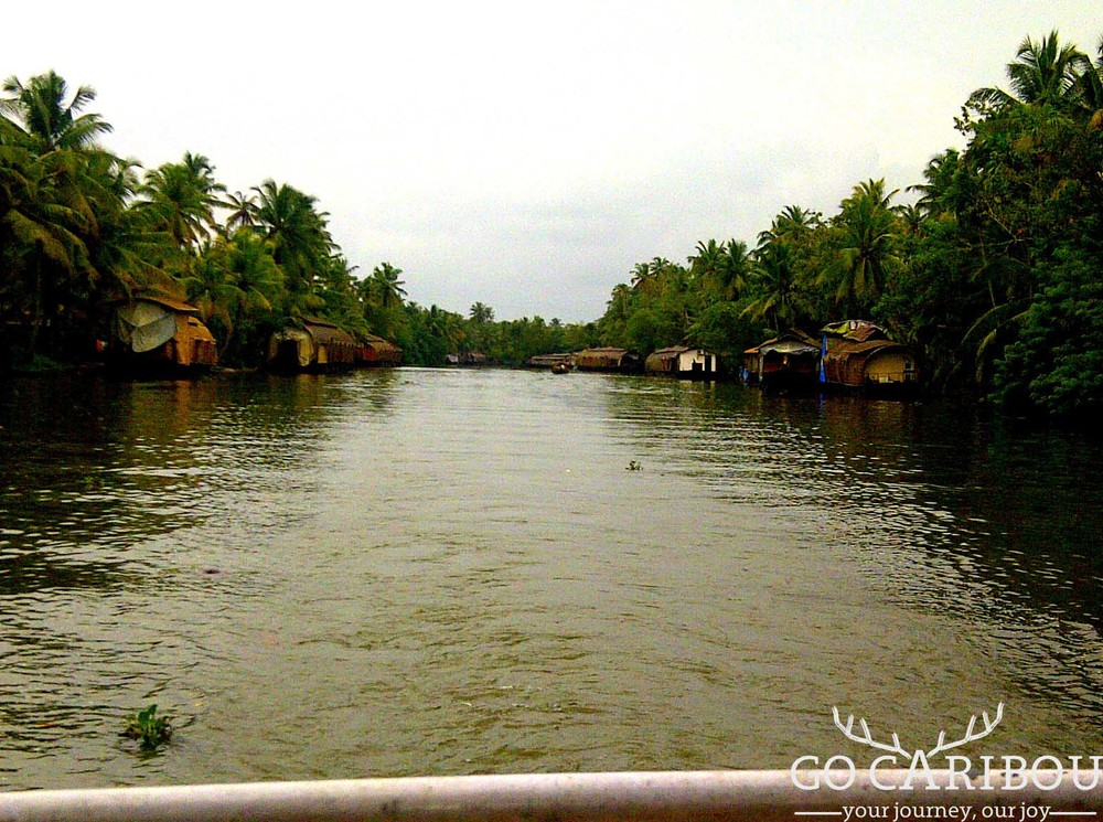 Scenic views of backwaters