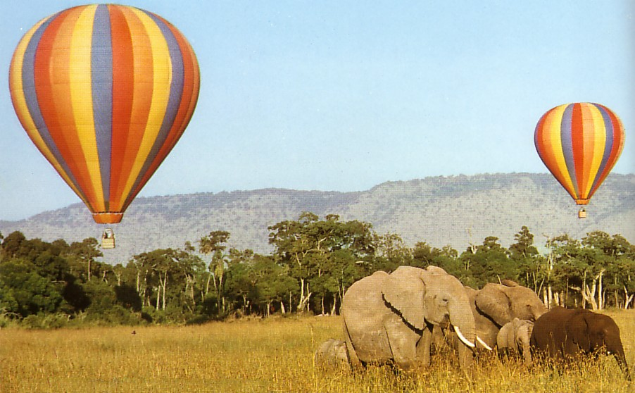 Hot Air Balloon Wildlife Safari