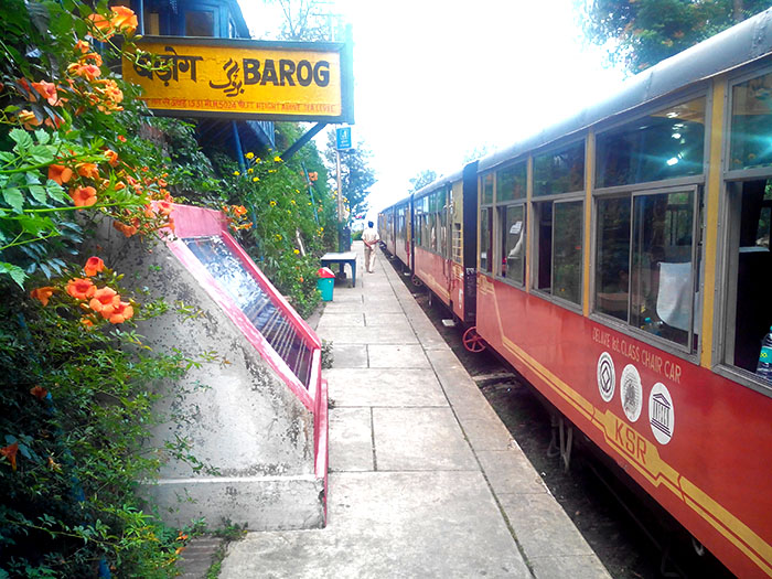 Shimla- Kalka Toy Train