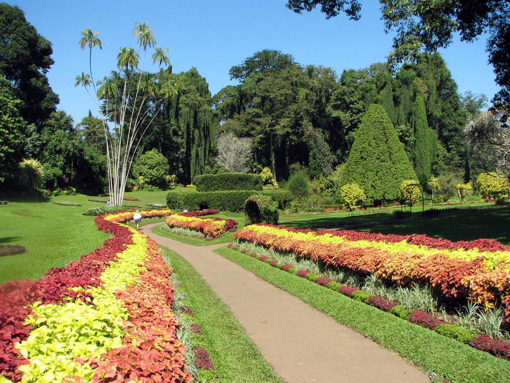Royal Botanical Garden Image Credit: Wikipedia