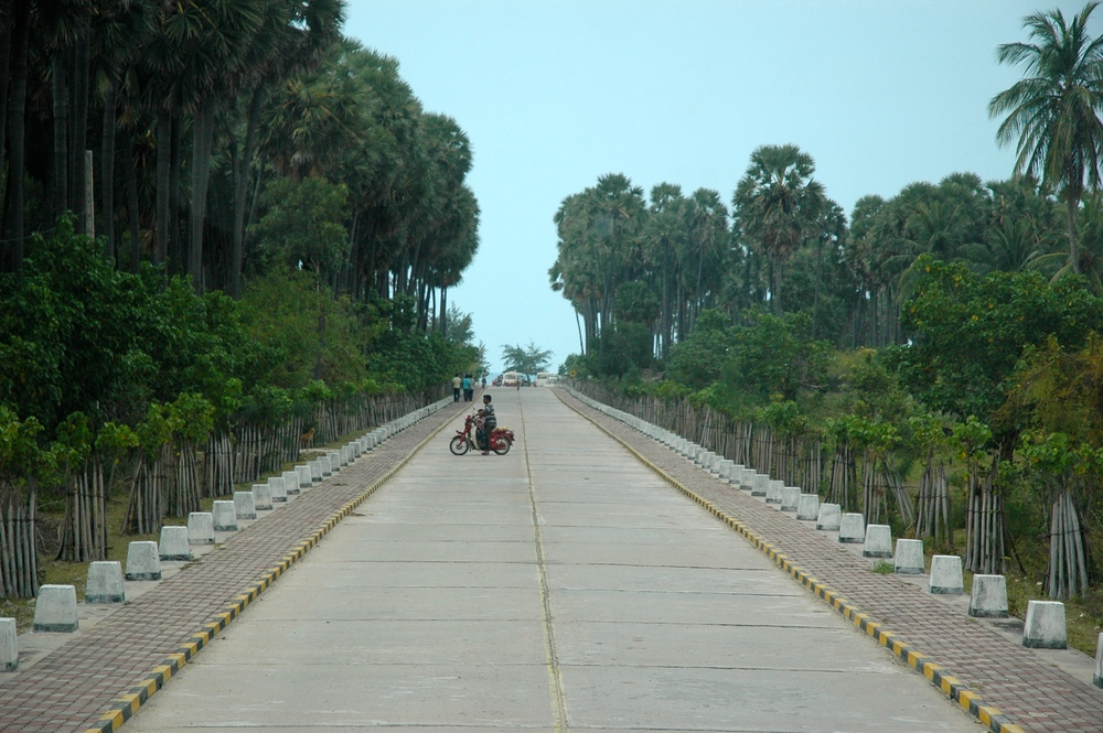 Road to Casaurina Beach Image Credit: Wordpress.com