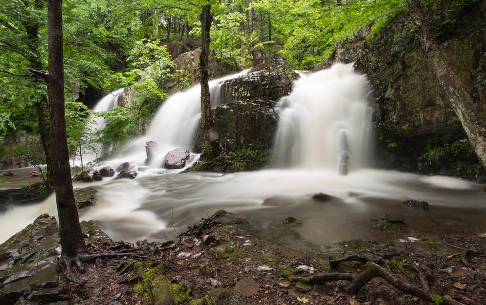 Westfield Waterfalls-3.jpg