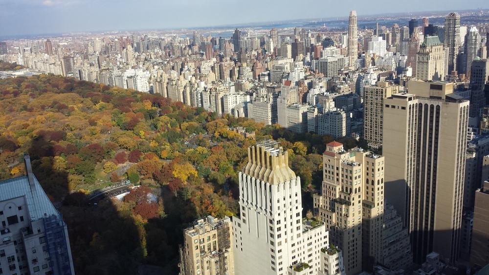 2013 11.02 Central Park.jpg