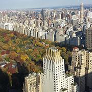 web NYC Central Park.jpg