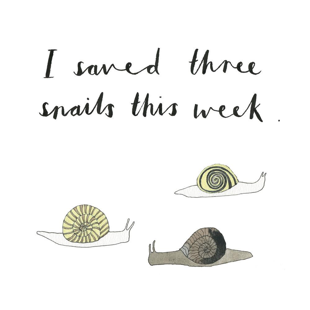 snails.jpg