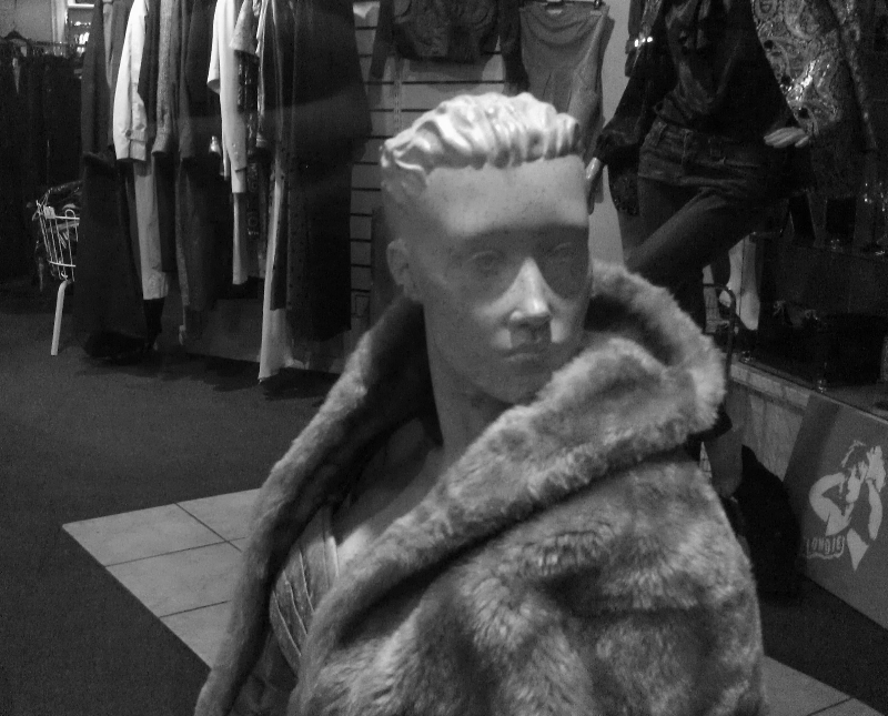 Miss Mannequin in Finchley