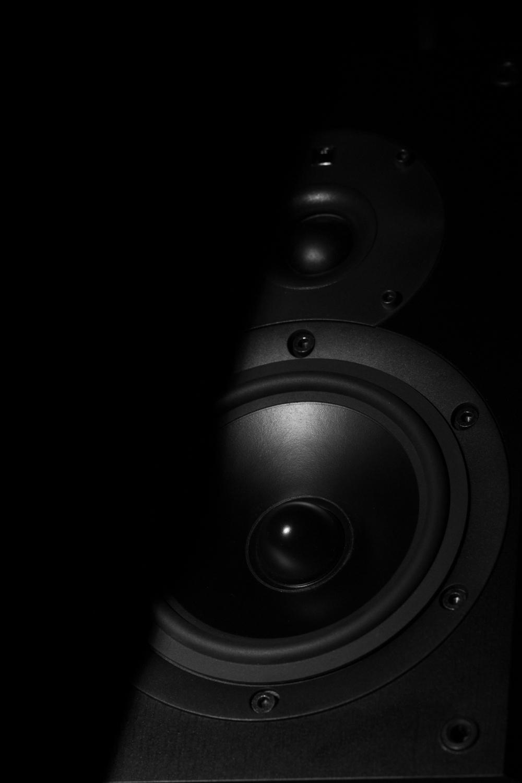 Speaker1500-5.jpg