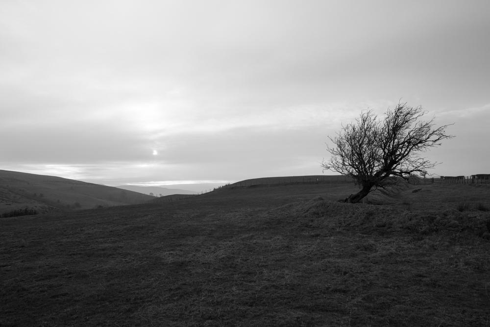 Wales1500-10.jpg