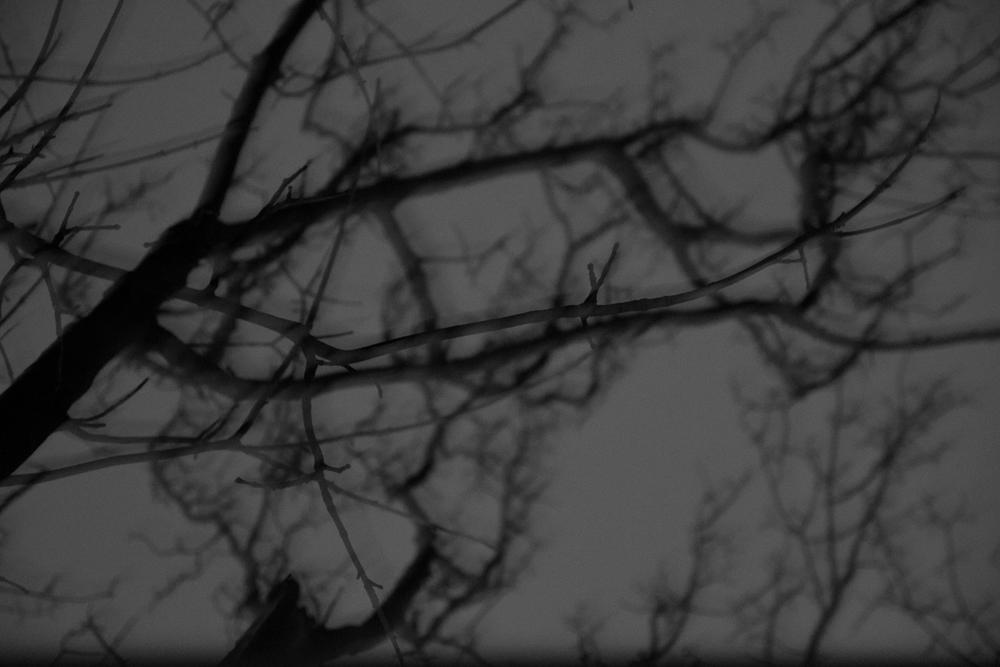 Night&Snow-17.jpg