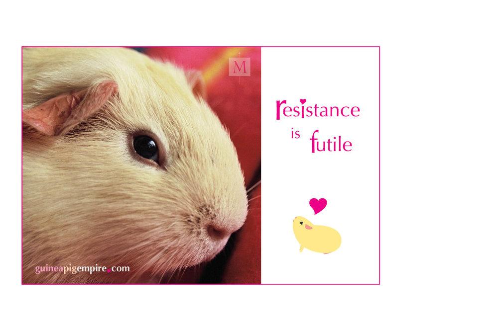 Resistance is futile (left).jpg