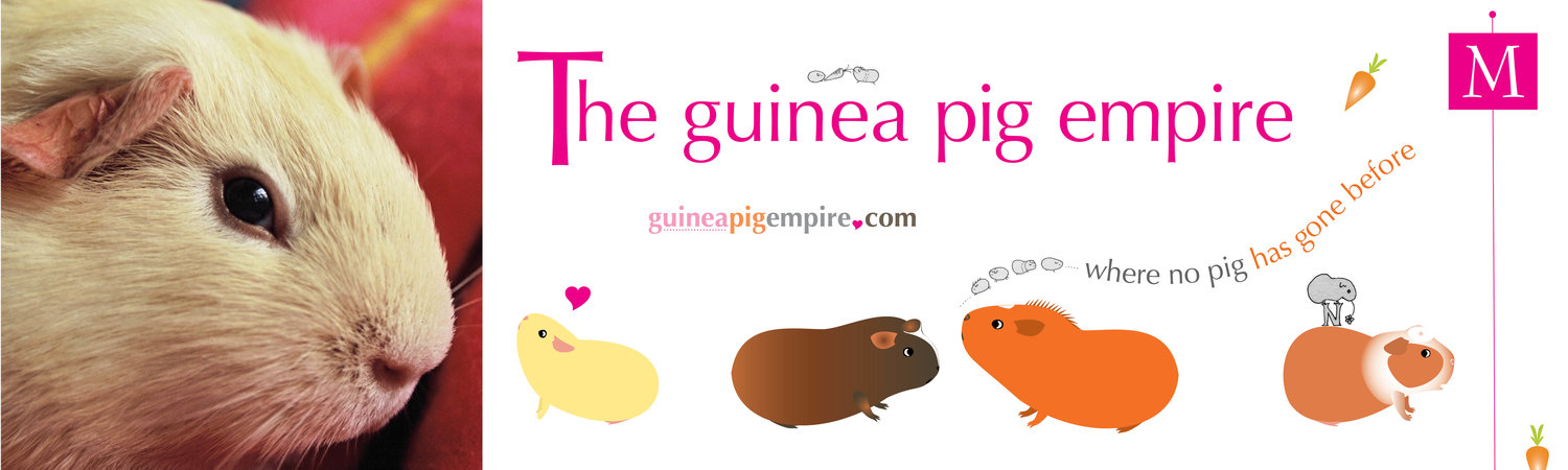 the guinea pig empire