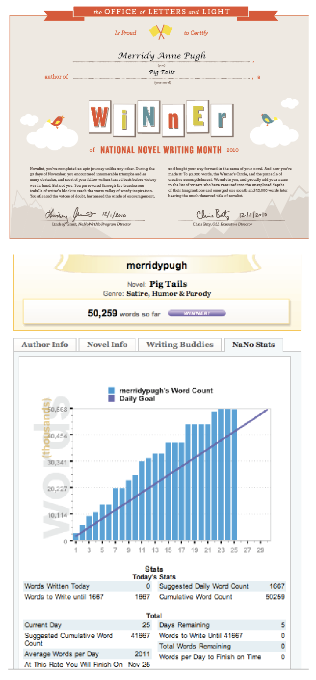NaNoWriMo 2010 for GPE blog.png