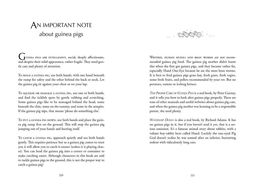 Pig Tails appendix for ABDA.jpg