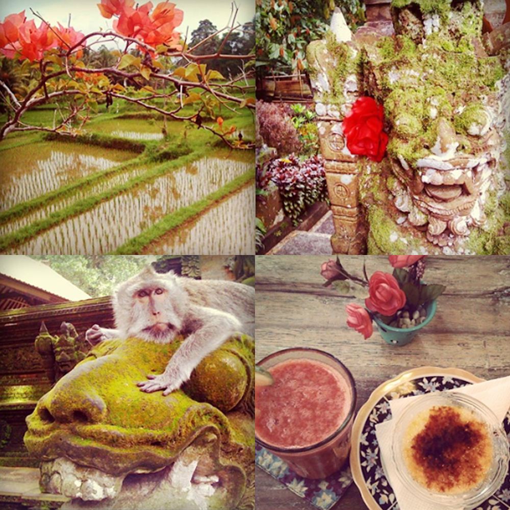 Bali Instagram, colours and contrast.