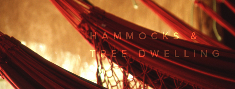 hammocks and tree houses