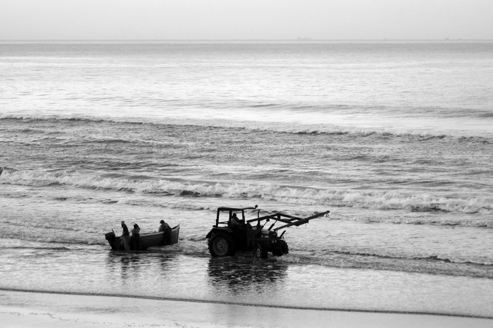 taghazout morocco fishing boats