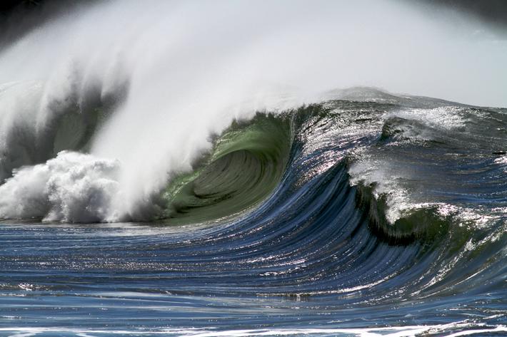 ode to the ocean hawaii wave